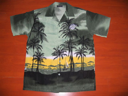 Boy Hawaiian Party Shirts